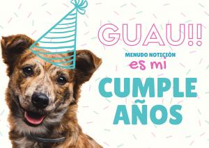 Tarjeta de cumpleaños perro