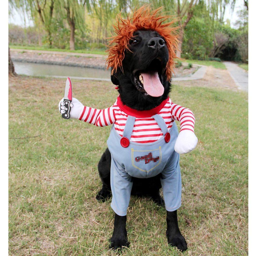 Disfraz chucky para perro