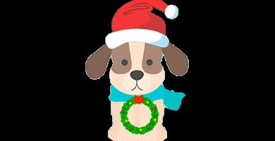 Disfraz para perro en Navidad